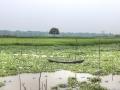 village-lake-bangadesh